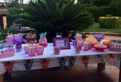 Sweet table Dott.ssa Peluche